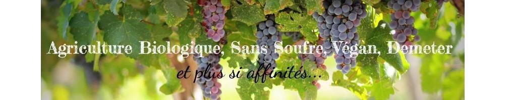 Découvrez notre large sélection de vins bio et natures